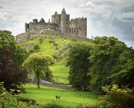 Stages en Irlande Internships in Ireland